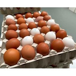 Cartón (30 huevos)